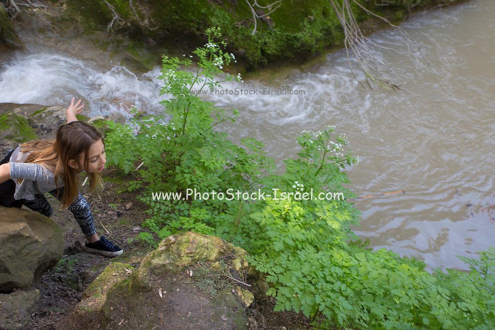 Young girl of eight plays near a natural water spring and stream