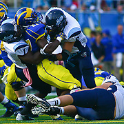 University of Maine linebacker Donte Dennis (1) and cornerback Troy Eastman (6) take down Delaware Running Back Julian Laing #27 in second quarter of a Week 6 NCAA football game against Delaware.
