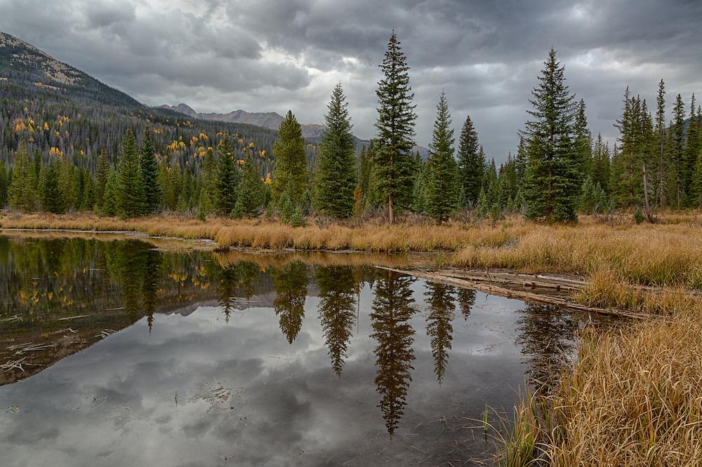 Beaver Pond, Kawuneeche Valley. Rocky Mountain National Park, Colorado, USA.