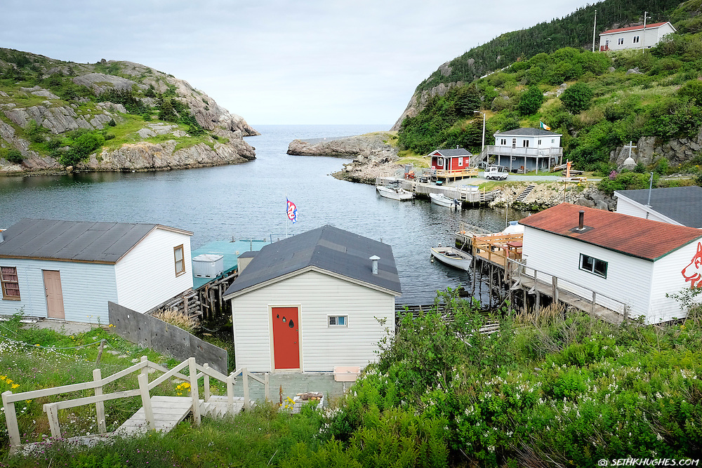 Houses and fishing boats in Quidi Vidi Harbour, St. John's, Newfoundland, Canada.