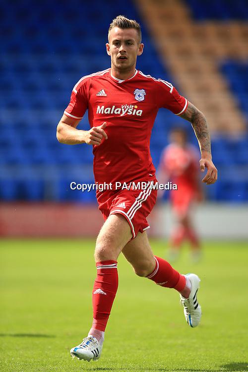 Joe Ralls, Cardiff City