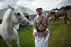 © London News Pictures. 08/05/2012. Windsor, UK.  Horses belonging to the king of Barhain being prepared for show on day one of the Royal Windsor Horse Show, set in the grounds of Windsor Castle. Established in 1943, this year will see the Show celebrate its 70th anniversary. Photo credit: Ben Cawthra/LNP