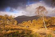 Ben Cruachan,  Loch Aweside