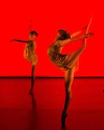 Choreographics
