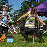 Greeley Kennel Club 08/19/2019