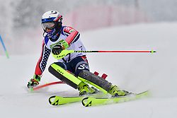 WALSH Thomas C, LW4, USA, Men's Giant Slalom at the WPAS_2019 Alpine Skiing World Championships, Kranjska Gora, Slovenia