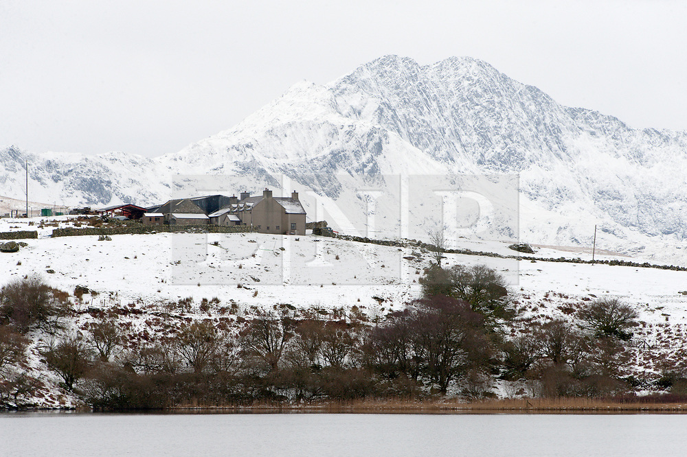 © Licensed to London News Pictures. 23/01/2019. Snowdonia, Gwynedd, Wales, UK. A wintry landscape in Snowdonia National Park, Wales, UK after more snow fell last night and early this morning. credit: Graham M. Lawrence/LNP