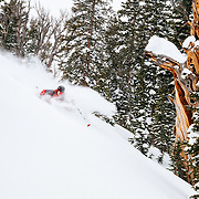 Andrew Whiteford skiing side-country powder and terrain at Jackson Hole Mountain Resort.
