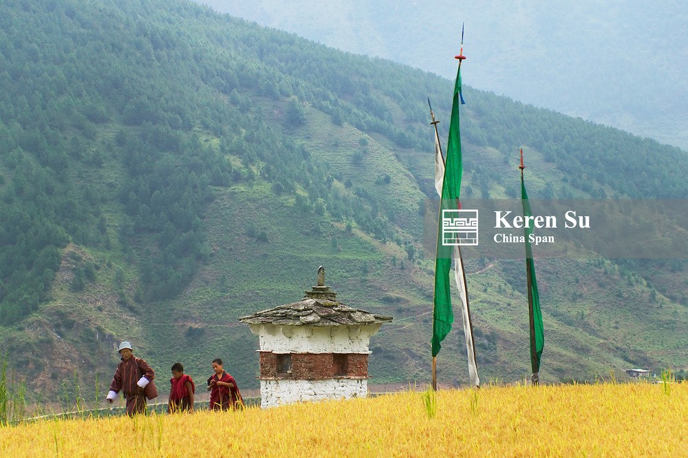 Chorten with rice paddies in Metshina village, Wangdi, Bhutan