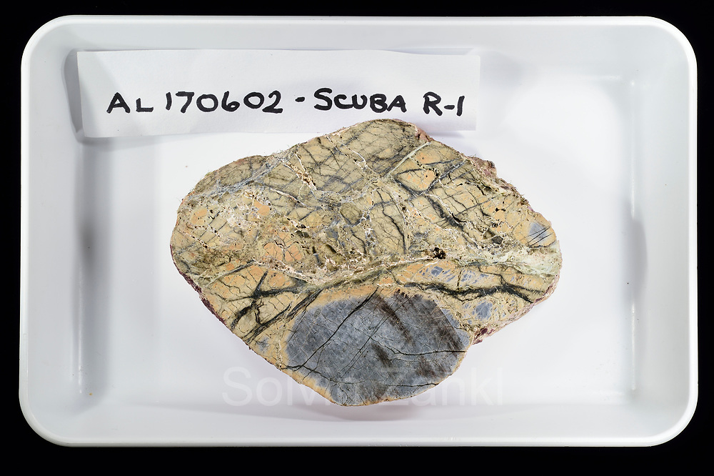 Rock from Earth's mantle, called peridotite, that is dark grey when fresh, but now shows the effects of chemical reactions with seawater that alter it to a green-brown rock called serpentinite. Central equatorial Atlantic Ocean, Saint Peter and Saint Paul Archipelago, Brazil #STP17 [first published through bioGraphic, a program of the California Academy of Sciences] |