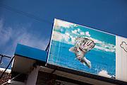 Advertising poster board of the fish restaurant in Gugye-ri village / South Korea, Republic of Korea, KOR, 04 October 2009.