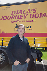 "© London News Pictures. 23/06/2013. Hythe, Kent, UK.(EMBARGO UNTIL 24/06/13). Damian Aspinal, Chairman of The Aspinal Foundation stands in front of the DHL lorry as it leaves to complete the first stage of ""Djala's Journey Home. A critically endangered western lowland gorilla family from Port Lympne Wild Animal Park are bound for Gabon in Africa as part of The Aspinal Foundation's Back to the Wild campaign. Djala, a 30 year old silverback, four mothers and four offspring embark on a unique 6,000 mile journey back to the wild courtesy of its partners DHL. Picture credit Manu Palomeque/LNP"