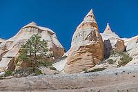 Kasha-Katuwe Tent Rocks National Monument, New Mexico, USA