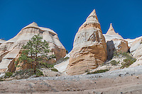 Kasha-Katuwe Tent Rocks National Monument, New Mexico, USA
