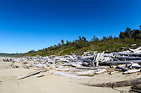 Driftwood piled up on high tide line,   Wickaninnish Beach, Ucluelet , British Columbia, Canada