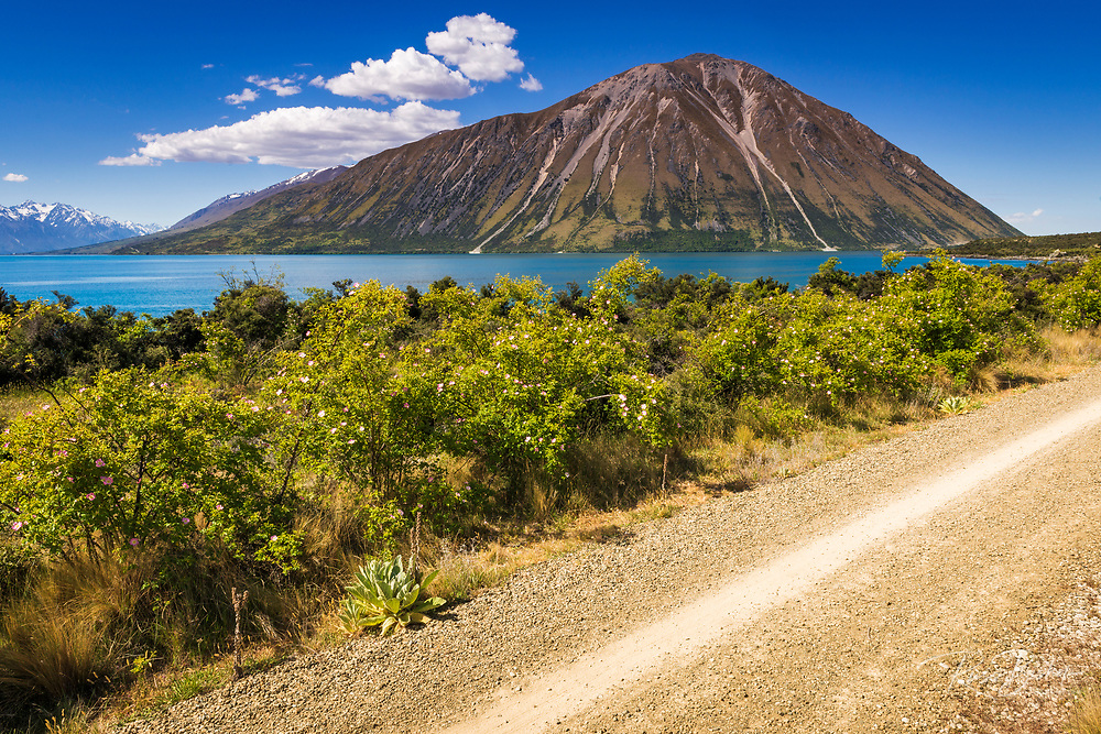 The Alps to Ocean Cycle Trail at Lake Ohau, Southern Alps, Canterbury, South Island, New Zealand