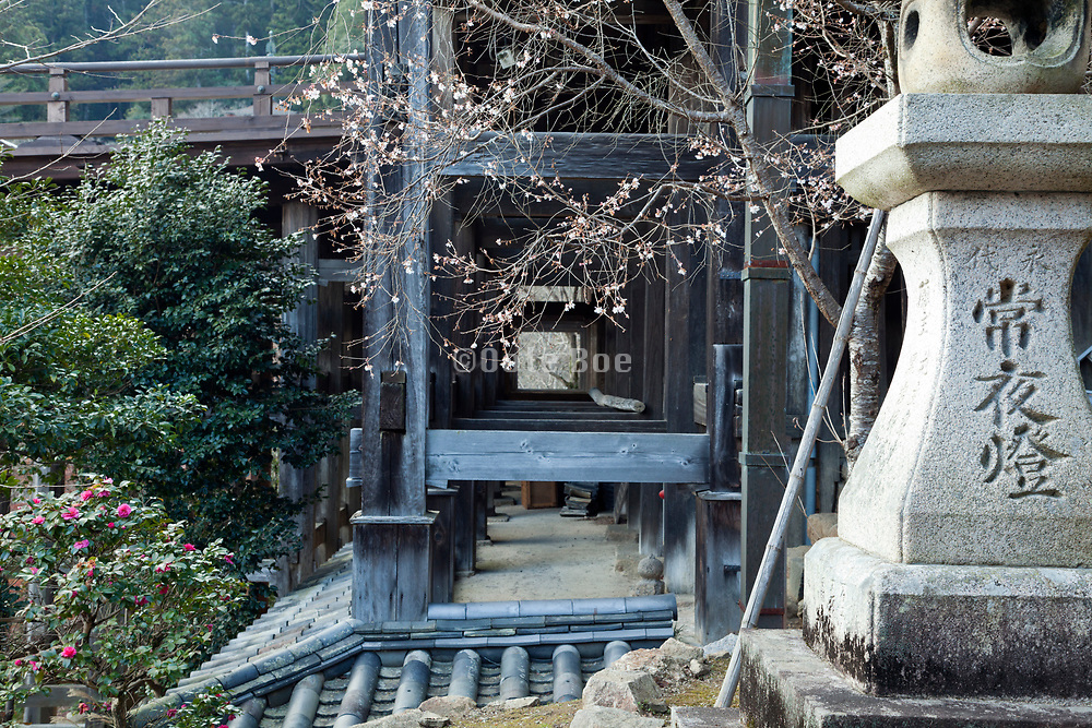 site view platform showing the construction at the Hasedera temple Nara prefecture Japan