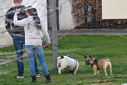 17.03.2020, Innsbruck, AUT, Coronavirus in Österreich, tägliches Leben in der Coronavirus Krise, im Bild Gassi gehen mit Hunden // Walking with dogs. The Austrian government is pursuing aggressive measures in an effort to slow the ongoing spread of the coronavirus Innsbruck, Austria on 2020/03/17. EXPA Pictures © 2020, PhotoCredit: EXPA/ Erich Spiess