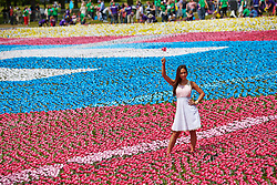 © Licensed to London News Pictures.  08/06/2013. LONDON, UK. Myleene Klass (pictured) helps create the Big IF installation in Hyde Park. Consisting of paper flowers each petal is meant to represent the millions of children who die each year from malnutrition. A number of charities have combined to hold a rally demanding that G8 leaders take action to tackle global hunger.  Photo credit: Cliff Hide/LNP