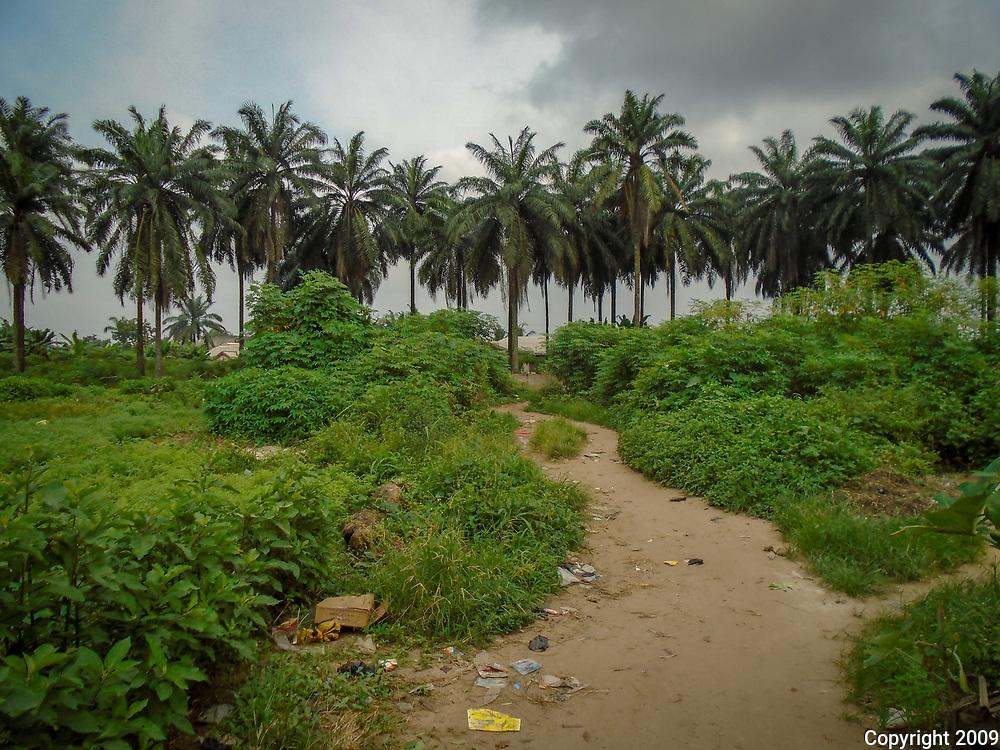 Degradation in the Delta by Tamaratonye Dan-Asisah, Port Harcourt, 2017