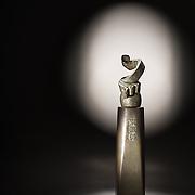 Nanying Award