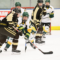 2nd year forward Merissa Zerr (24) of the Regina Cougars in action during the Women's Hockey home game on January 27 at Co-operators arena. Credit: Arthur Ward/Arthur Images