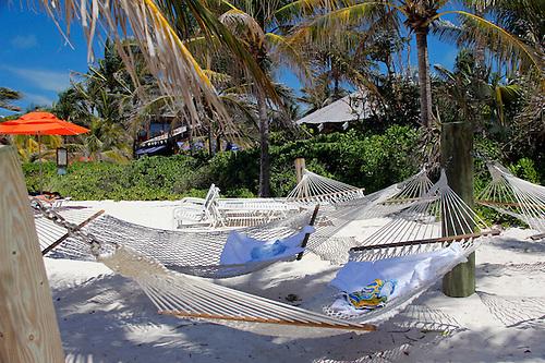 caribbean bahamas castaway cay  hammocks in shade at castaway cay  hammocks at castaway cay   mira terra images travel photography  rh   kymri photoshelter