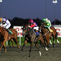 Kempton 28th October