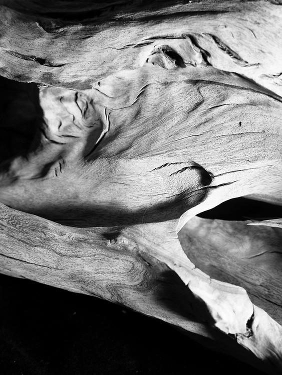 Black & White Silver Gelatin Fibre Print<br /> Signed Limited Edition Original