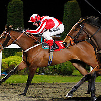 Wishformore and Tom Queally winning the 7.45 race