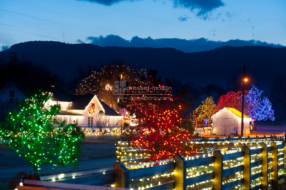 Trail of Lights 2010,  Denver Botanic Gardens at Chatfield