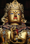 The head and upper body of a freshly painted Buddha standing 26 meters tall in the Gandin Hid Monastery, Ulaanbaatar, Mongolia. It's full name is Gandantegchinlen; built in 1840, and one of the largest and most important in Mongolia. It was not destroyed in the religious purge of 1937 however. An agent of the Mongolia KGB was installed as head monk in 1980 where he stayed until religious freedom was granted in Mongolia in 1990. Mongols visit the monastery where a full complement of monks studies and worships.