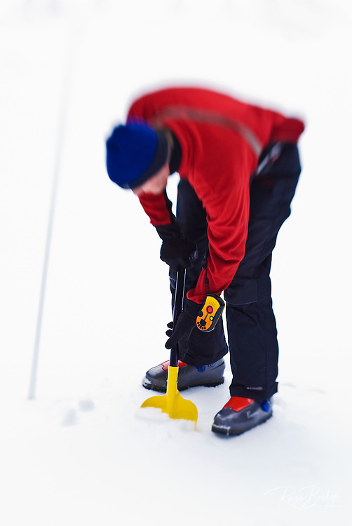 Backcountry skier using an avalanche beacon, probe and shovel to locate a buried skier, Sequoia National Park, California
