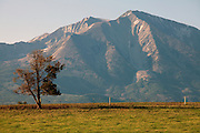 Bill Fales, owner of Cold Mountain Ranch in Carbondale, Colorado, has been ranching his sliver of land in the Roaring Fork Valley since 1973. <br /> <br /> Development, oil and gas extraction, and mechanized recreation all threaten the valley--and his livelihood. Not surprisingly, Fales is a proponent of conservation, having placed his property in a land trust in perpetuity. He is also in favor of the expansion of wilderness designation within his and adjoining counties. <br /> <br /> Ranching in Colorado would, arguably, not exist without the use of public lands. Fales' ranch is no different. In order to give his animals the space they need in the summer--and the pasture grasses on his ranch property the time they need to grow high in order to feed his cattle come winter--he must graze on public land. That means securing grazing permits on BLM and U.S. Forest Service land. But it does not preclude the use of wilderness lands either.<br /> <br /> Unknown to much of the public, wilderness areas can serve as grazing lands under the Wilderness Act of 1964. In fact, Fales grazes on Maroon Bells-Snowmass Wilderness area; another permit area is being considered for wilderness designation. His permit would remain if the new designation came to fruition, being &quot;grandfathered&quot; in by that original Wilderness Act.