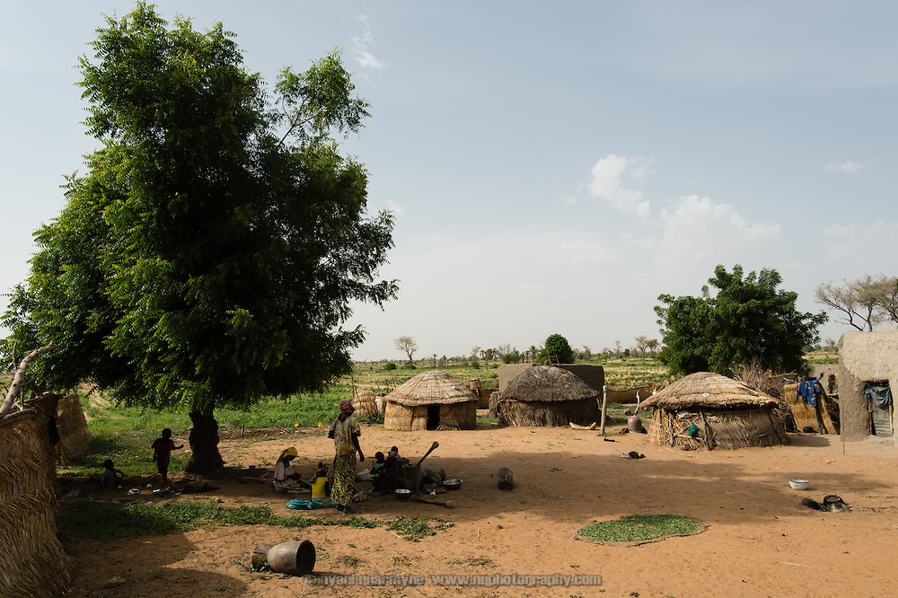 A homestead in the village of Din-Rimi in the Zinder Region of Niger on 24 July 2013.