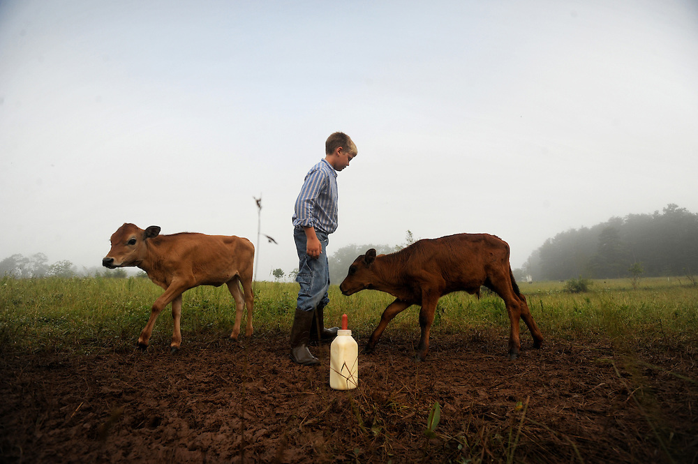 Joshua Fuhrmann tends to the baby cows feeding them with a bottle on Our Father's Farm, his family farm in Gretna, Va.