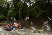 "Boats look for ""storms"" or places where there are lots of fish jumping at the same time to get as many fish in the boat as possible at the 10th Annual Redneck Fishin' Tournament held Saturday, Sept. 5, 2015, in Bath, ILL. The only fishing tournament where poles are not allowed and you must catch the Asian Carp with a net or your hands as they fly through the air. This year 5,839 if the invasive species were removed from the Illinois River during the tournament. Photography by Rob Hart"