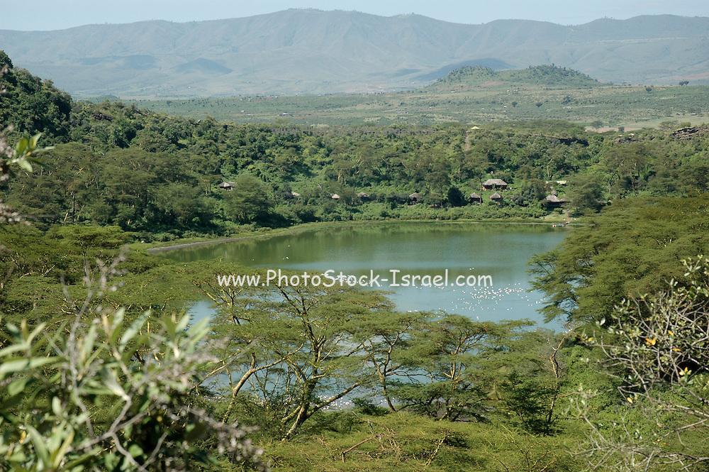 Kenya, lake naivasha, Kenya The crater lake