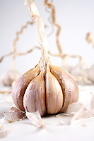 Studio shot of garlic on white background