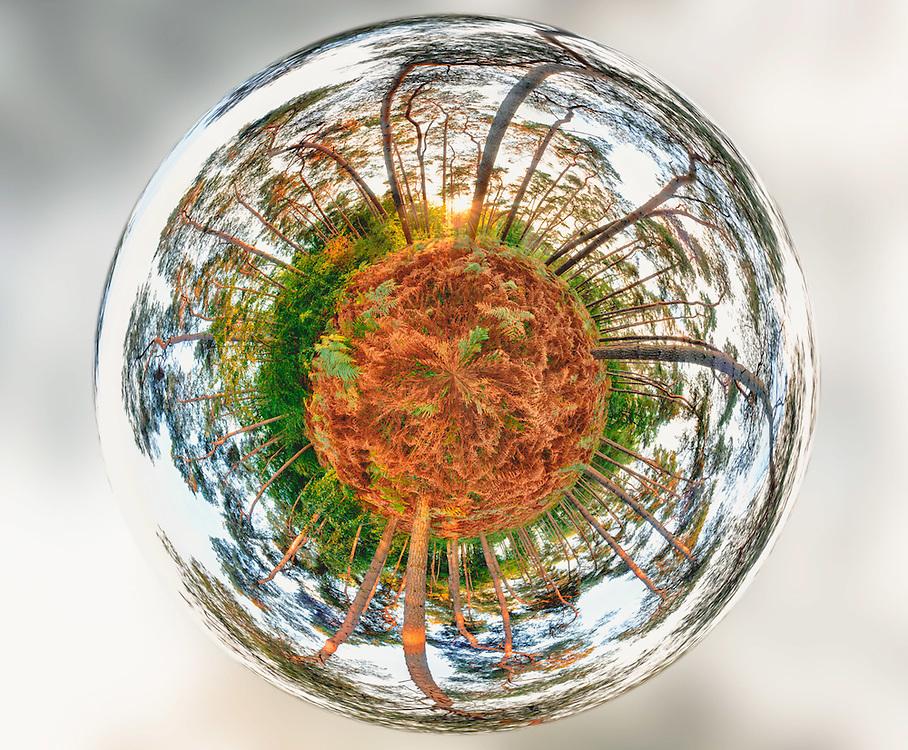 Corroy-le-Grand, 26 September. Tiny planet made in &quot;bois de Villers&quot;.<br /> Credit : Paul Marnef / Isopix Photo, Foto : ISOPIX (BELGI&Euml;, BELGIQUE - Brussel, Bruxelles)