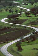 SPAIN, ANDALUSIA winding road through green hills in the Sierra de Alhama, northeast of Malaga