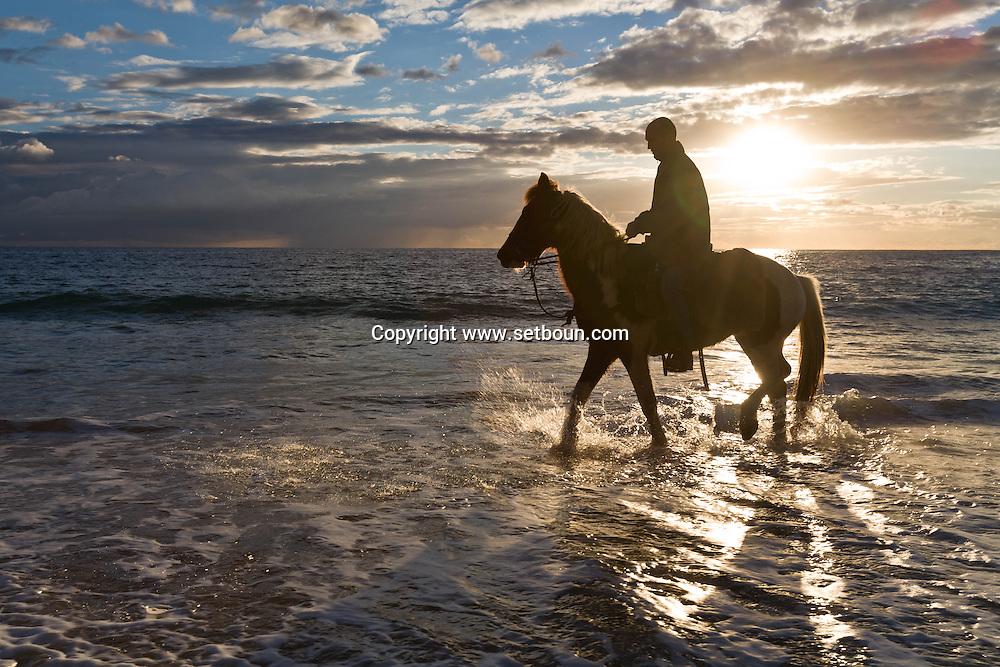 Corsica. France. horse riding in the mediteranean sea on the beach of tradicetto ,Corsica south  France    / randonnee a cheval sur la plage de Tradicetto,  au coucher du soleil  Corse du sud  France  /
