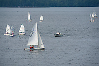 Bald Eagle and Sailboats from Lincoln Park in Gilford, NH.  © Karen Bobotas Photographer
