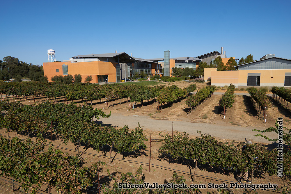 Robert Mondavi Institute for Wine and Food Sciences, Davis, CA