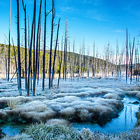 Yellowstone and Paradise Valley