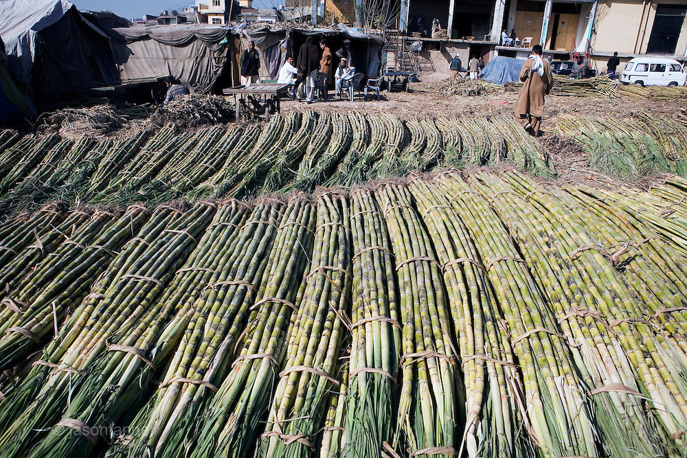 Pakistan is the fifth largest producer of sugarcane amongst countries producing sugar from sugarcane worldwide...Unfortunately because the crop planted by sugarcane farmers in Pakistan is of such low quality and farmers are paid according to cop yield, Pakistan only ranks fourteenth (14th) in the league table in terms of sugar production...Pakistan makes little use of exploring the possibilities of sugar by-products such as ethanol and bagasse as alternative sources of renewable energy...The industry is also affected by competition from an increasingly popular cottage industry of gur production, particularly in the NWFP of Pakistan. gur is not subject to the same heavy taxation levied on sugar mills and producers. Much of the gur is smuggled across the border to Afghanistan and where as 90% of the juice is extracted from sugar cane during production by sugar mills only 40-45% of potential juice is extracted in the production of gur, thus as a result some 50% of sugarcane is going to waste.