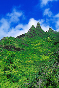Lush tropical canyons and spires along the Kalalau Trail, Na Pali Coast, Island of Kauai, Hawaii
