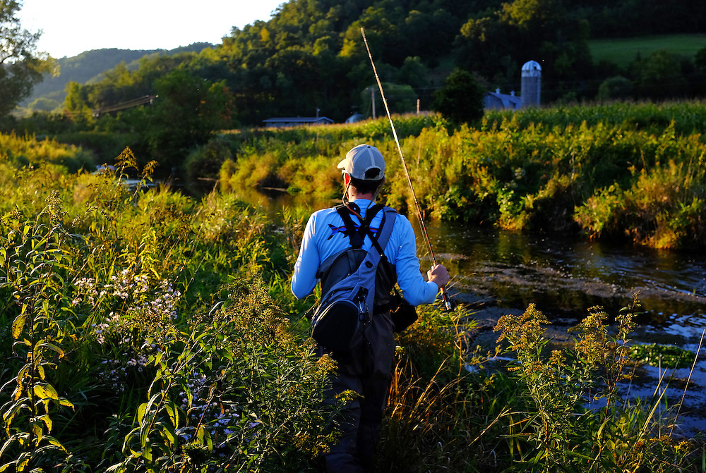 Fly Fishing for trout in the Driftless area, Wisconsin.