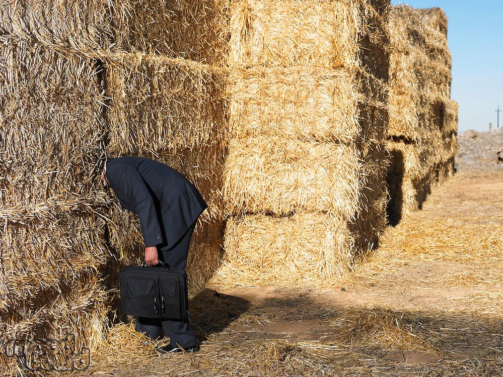 Man with his head stuck in haystack