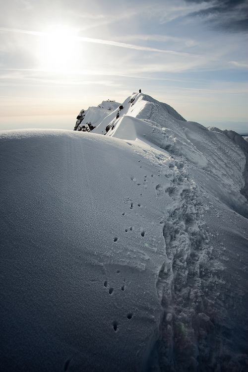 Mt Hood summit